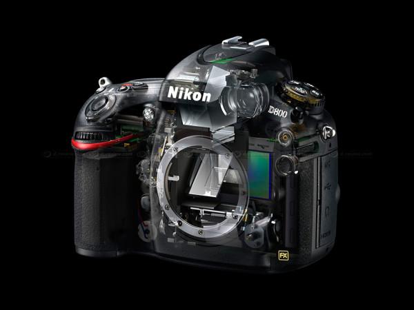 Nikon D800 Skeleton Image