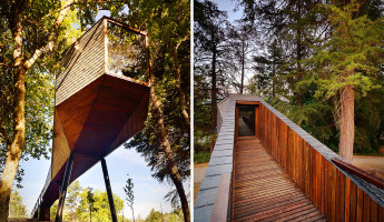 Tree Snake Houses – Portugal
