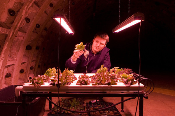 Zero Carbon Food 6 Indoor Hydroponic Farming 600x400 From Old Bomb Shelter to Indoor Farm of the Future