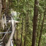 Highest Observation Decks - Capilano Suspension Bridge Park 3