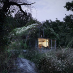 Contemporary Cabins - Green Box Overgrown Wilderness Studio 6