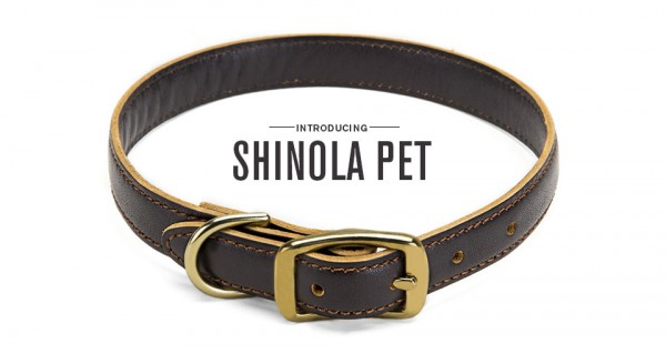 Shinola Pet: Crafted Cool for the Classy Canine