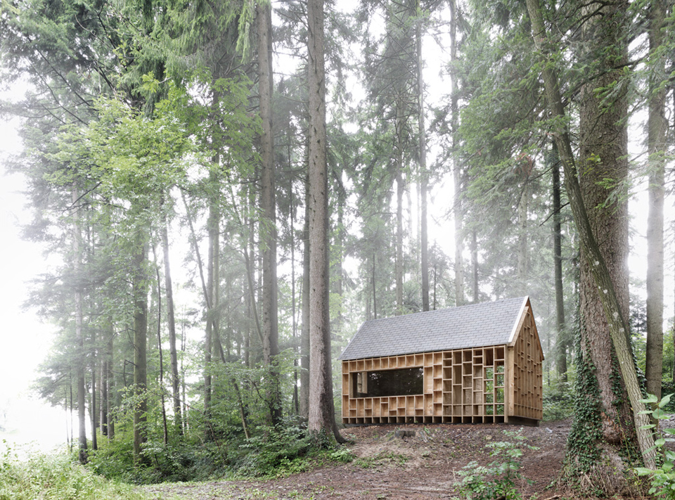 house-for-forest-owls-by-Bernd-Riegger-1