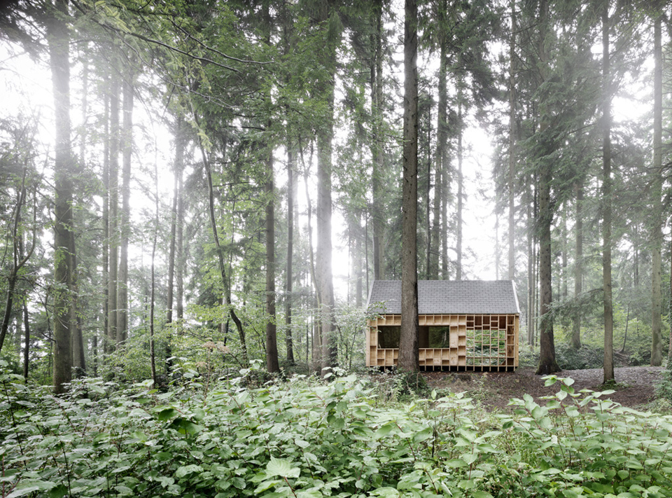 house-for-forest-owls-by-Bernd-Riegger-3