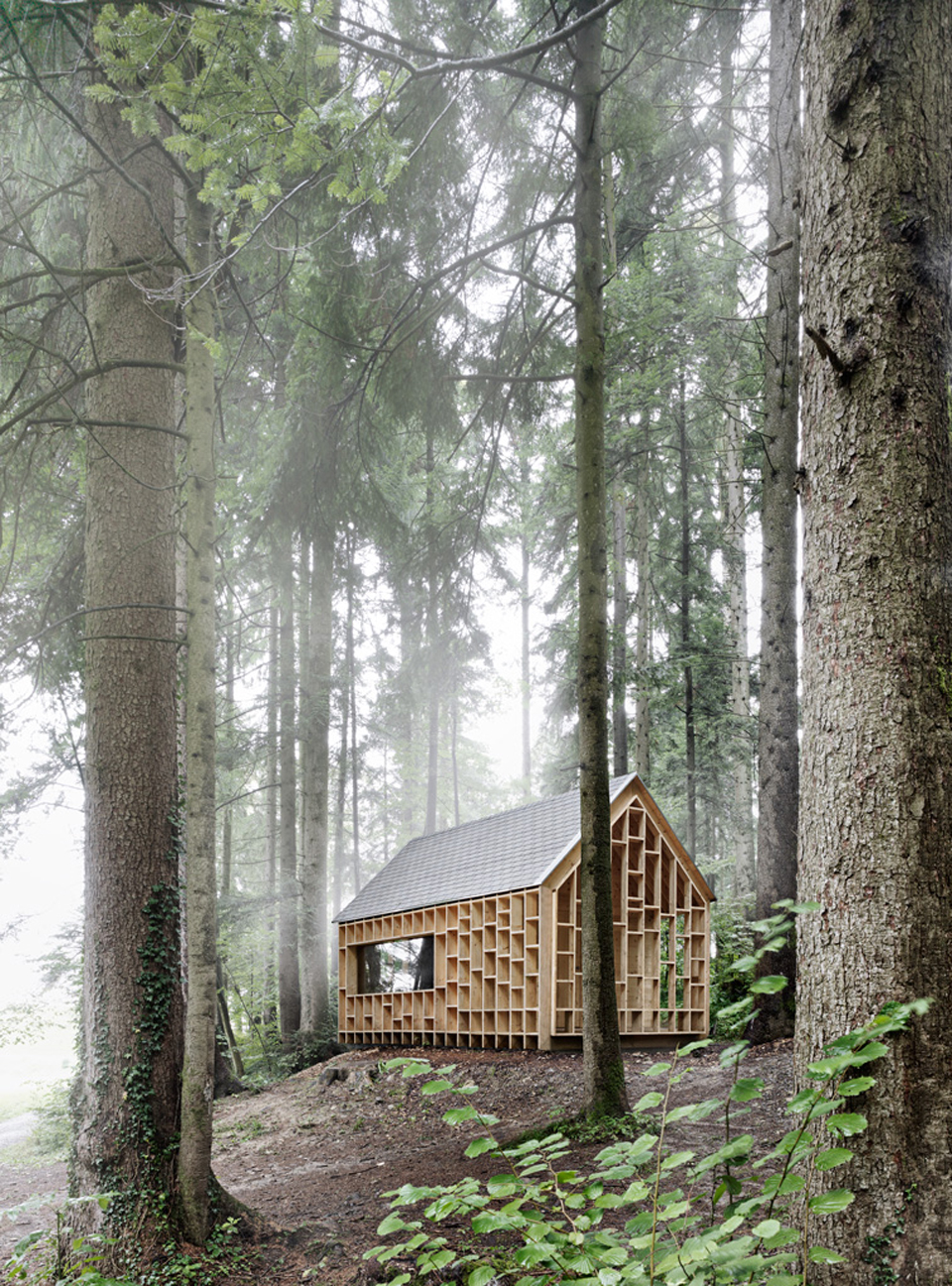 house-for-forest-owls-by-Bernd-Riegger-4