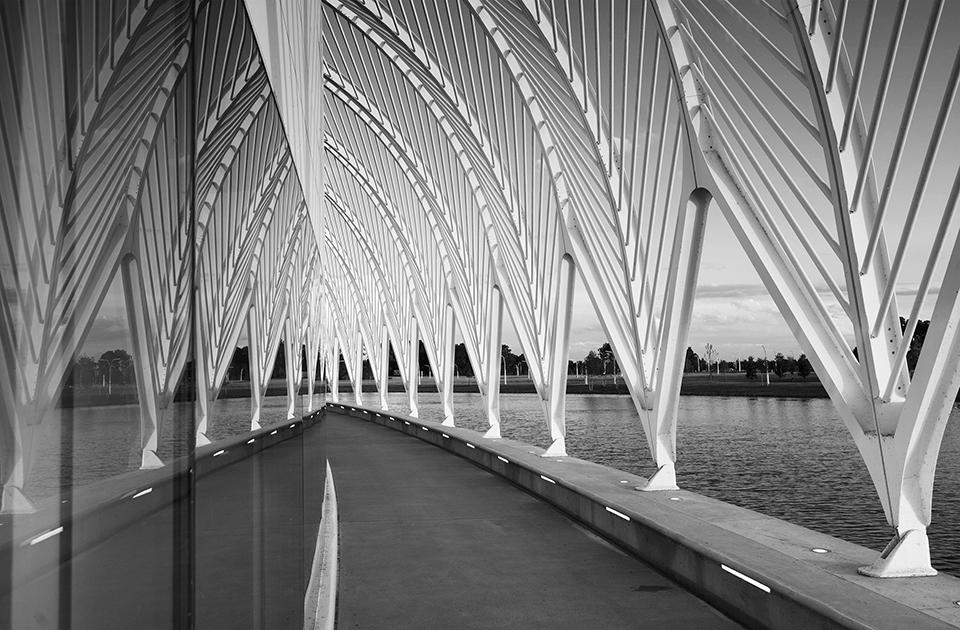 Florida-Polytechnic-University—IST-Building—Exterior-Daylight—Promenade-Mirror_bw_960