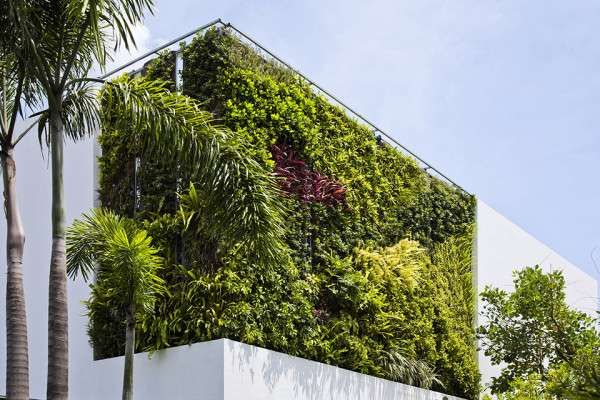 Green Walled Thao Dien House by MM++ House Architects 16