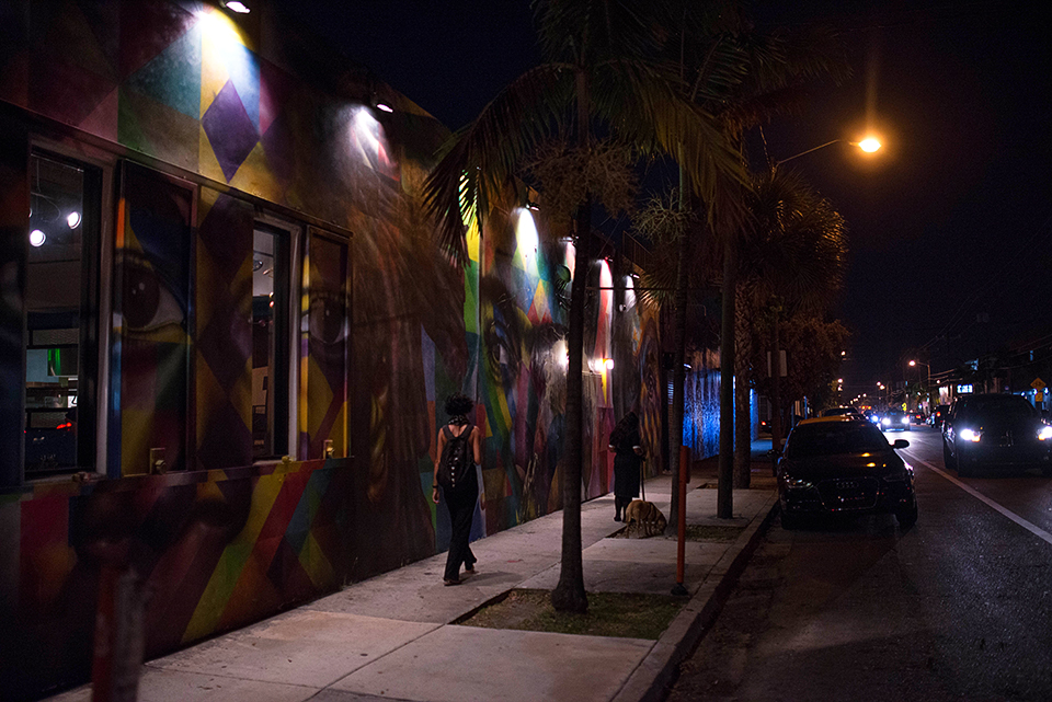 Wynwood Miami - 2nd Street Scene