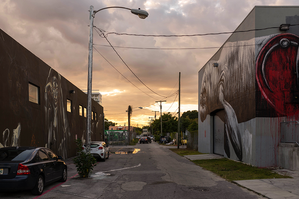 Wynwood Miami - Alley Graffiti Scene