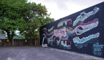 Wynwood Mural - Alligator Anatomy