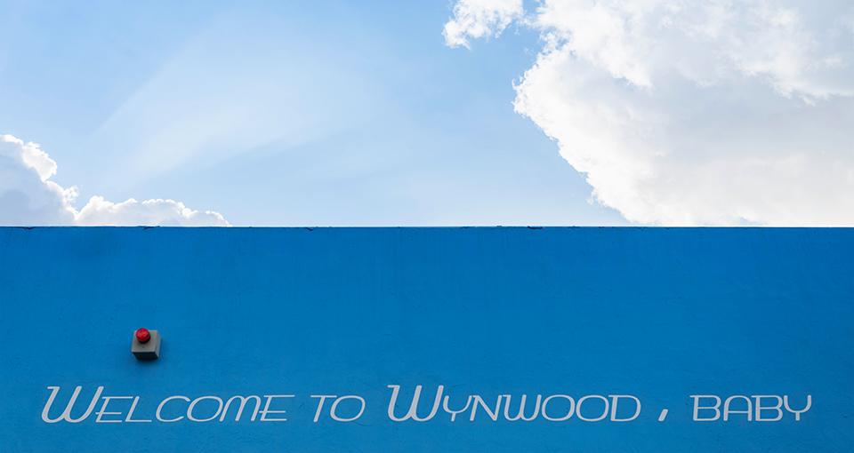 Wynwood by Bike Welcome to Wynwood Baby 1 Exploring #MiamiByBike: Discovering Graffiti Ground Zero in the Wynwood Arts District