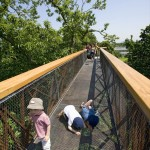 Nature Architecture 2014 - Kew Tree Top Walkway - London - 3