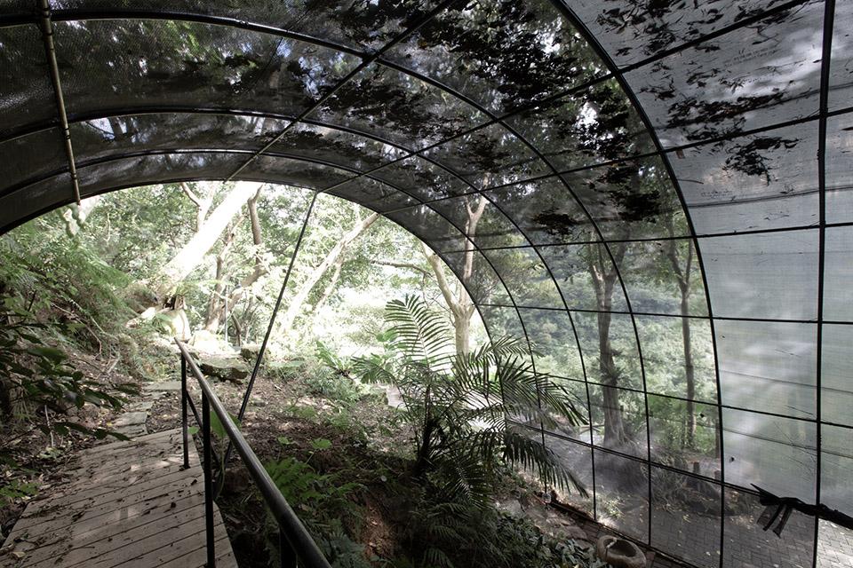 Siu Siu Net House by DIVOOE ZEIN Architects 11