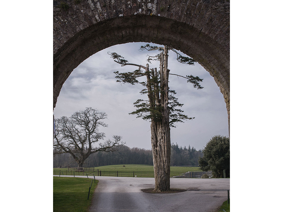 Castlemartyr-Resort—Arch-Framed-View_white