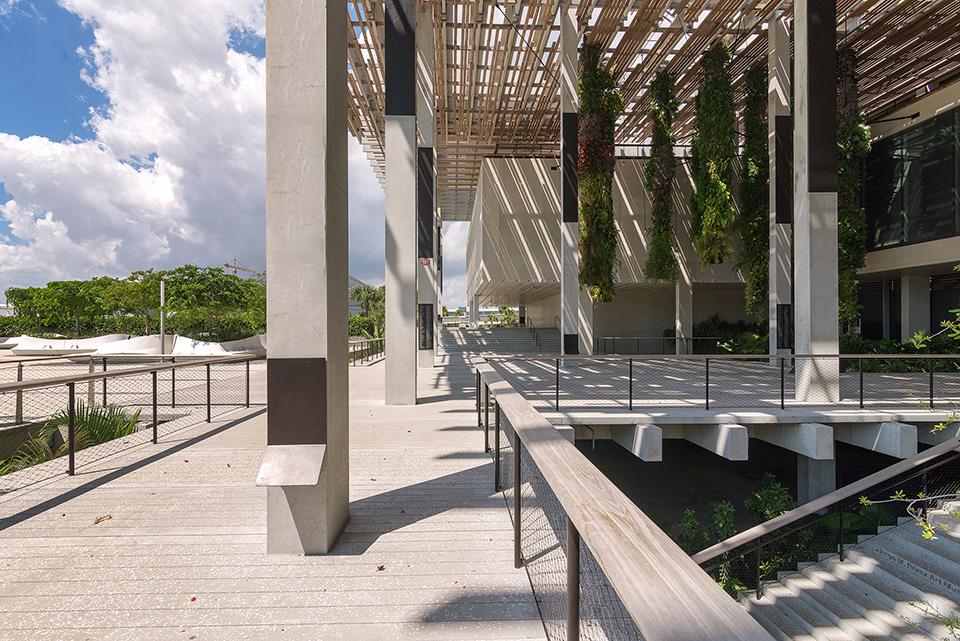 PAMM—Canopy-Entrance