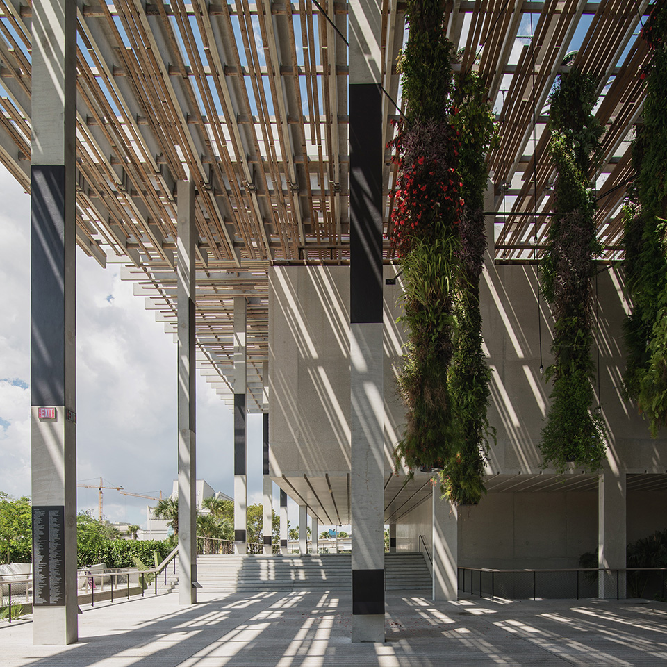 PAMM—Canopy-and-Shadow-Square_desat