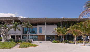 Perez Art Museum Miami - Photography by Seamus Payne - 29