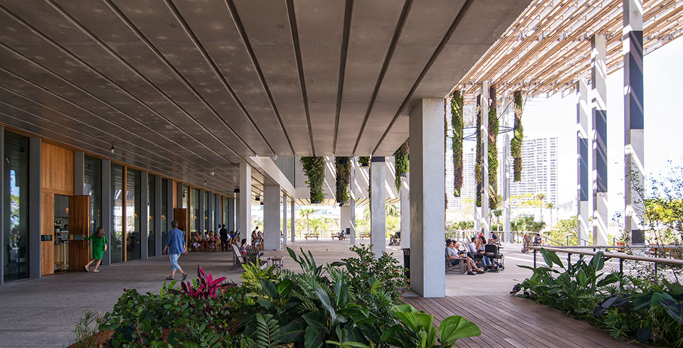 Perez Art Museum Miami - Photography by Seamus Payne - 30