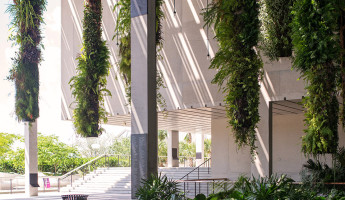 Perez Art Museum Miami - Photography by Seamus Payne - 32