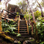 AirBNB Tree Houses - Hawaii Vacation Rental Treehouse 1