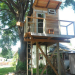 AirBNB Tree Houses - Portland Vacation Rental Treehouse 2