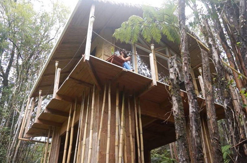 AirBNB TreeHouses – Hawaii Treehouse for Rent 2