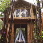 AirBNB TreeHouses - Hawaii Treehouse for Rent 3