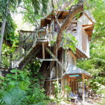 AirBNB TreeHouses - Miami Vacation Rental Treehouse and Organic Farm 1