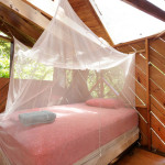AirBNB TreeHouses - Miami Vacation Rental Treehouse and Organic Farm 2