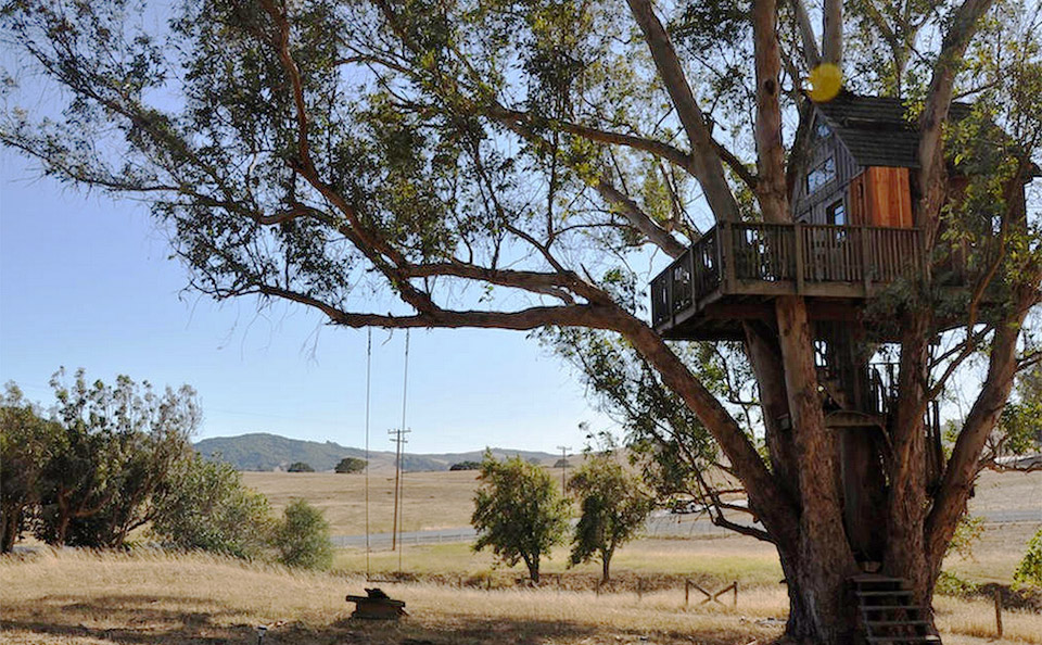 View In Gallery Airbnb Treehouses Sonoma Vacation Al Treehouse 1