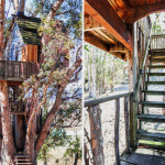 AirBNB TreeHouses - Sonoma Vacation Rental Treehouse 3