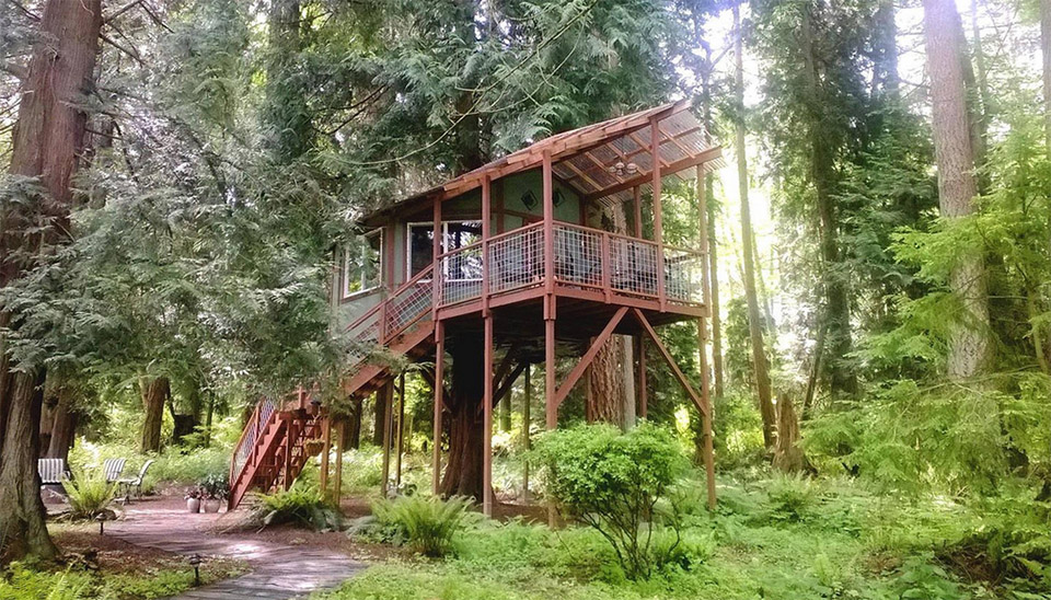 View In Gallery Airbnb Treehouses Washington Treehouse For 1