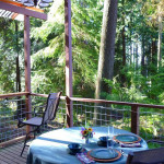 AirBNB TreeHouses - Washington Treehouse for Rent 2