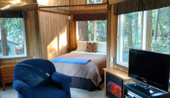 AirBNB TreeHouses - Washington Treehouse for Rent 3