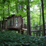 AirBNB Treehouses - Atlanta Treehouse Vacation Rental 3
