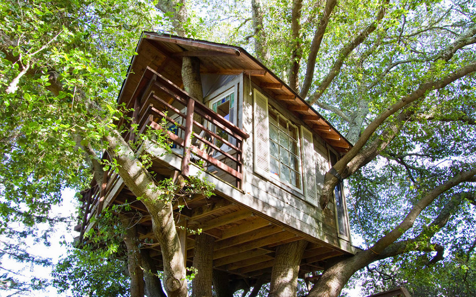 AirBNB Treehouses - San Francisco Treehouse Vacation Rental 1
