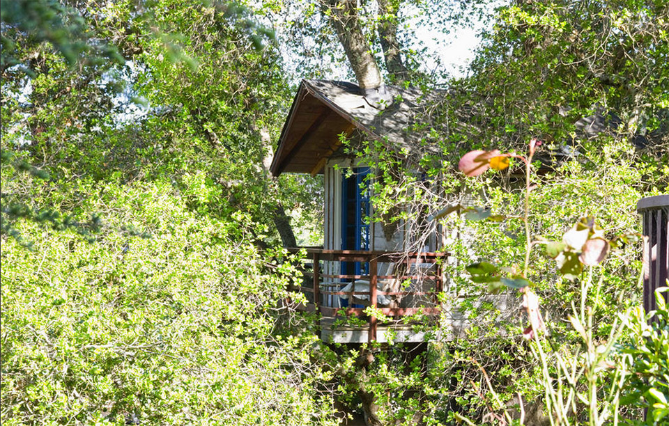 AirBNB Treehouses – San Francisco Treehouse Vacation Rental 3
