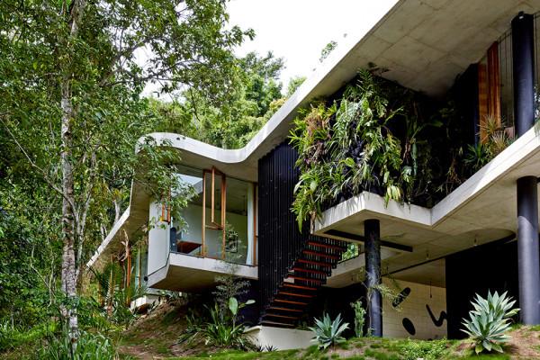 Planchonella House by Jesse Bennett 8
