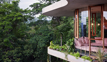 Planchonella House by Jesse Bennett hero