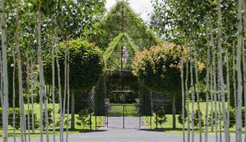 Tree Church of New Zealand 2