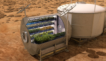 Vegetables Grown in Space - Mars Mission Food Research - 3
