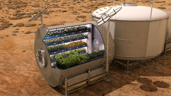 For the First Time in Human History, Astronauts Dine on Space Grown Produce