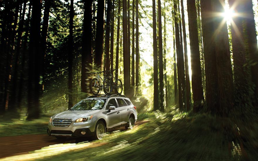 2016 Subaru Outback – in the woods