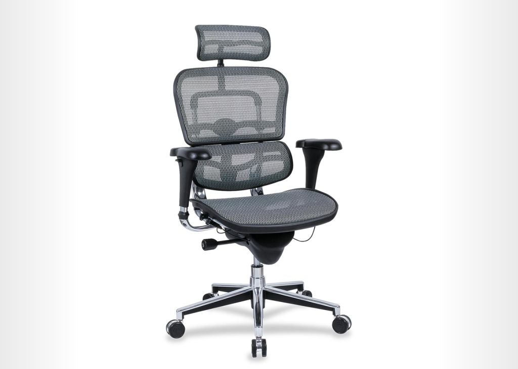Raynor Ergohuman  - Managerial Office Chair