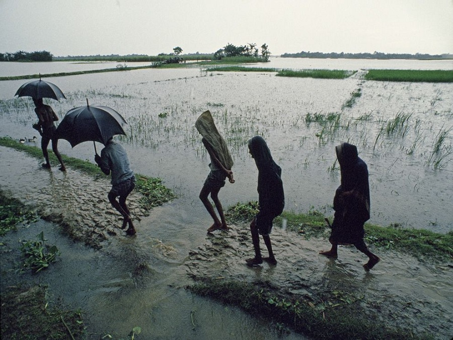 Villagers pass a submerged rice paddy during a monsoon in Nischintapur, Bangladesh. National Geographic.