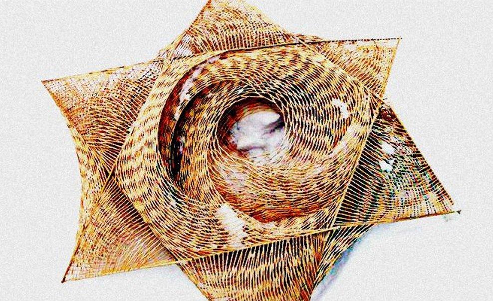 Six Million Pod by Franceska McCullough – toothpick sculpture