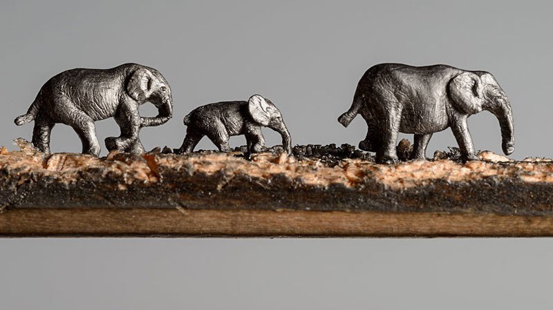 Close up of three elephants