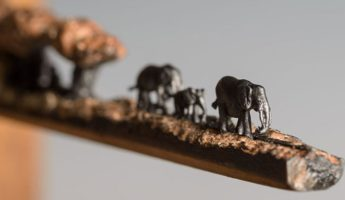 Big Creatures, Tiny Art: Artist Cindy Chinn Wows with Elephant Pencil Carving