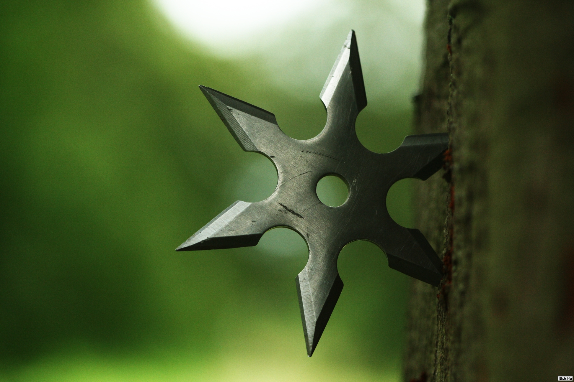 Shuriken – weapon of history