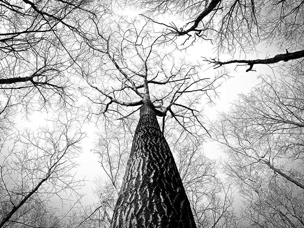 Black & White pictures – art for men